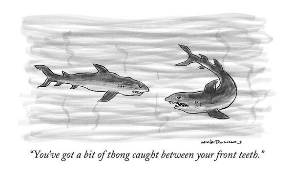 Sharks Drawing - You've Got A Bit Of Thong Caught by Nick Downes