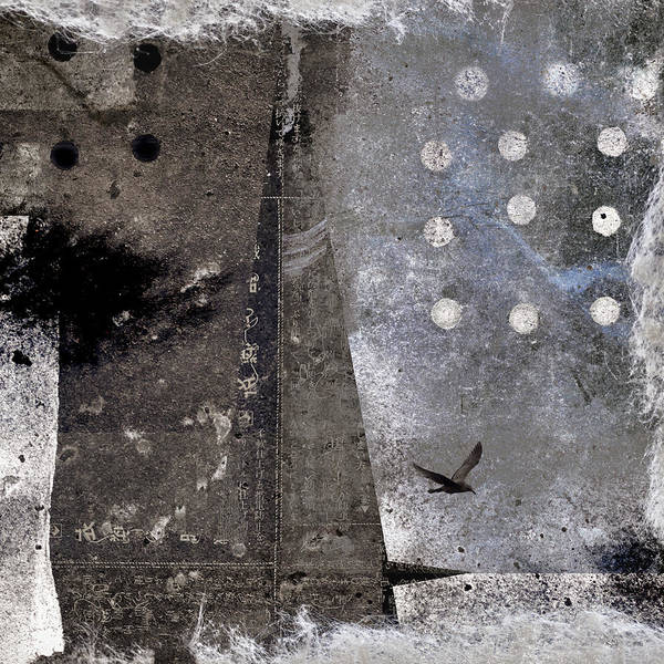 Cement Wall Art - Photograph - Yuki Desu  It Is Snowing by Carol Leigh