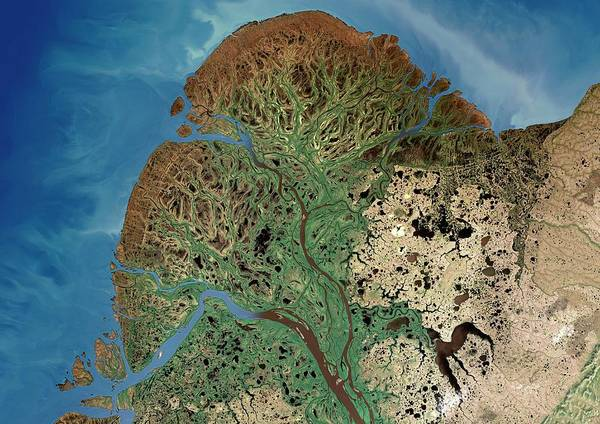 River Delta Photograph - Yukon River Delta by Planetobserver/science Photo Library