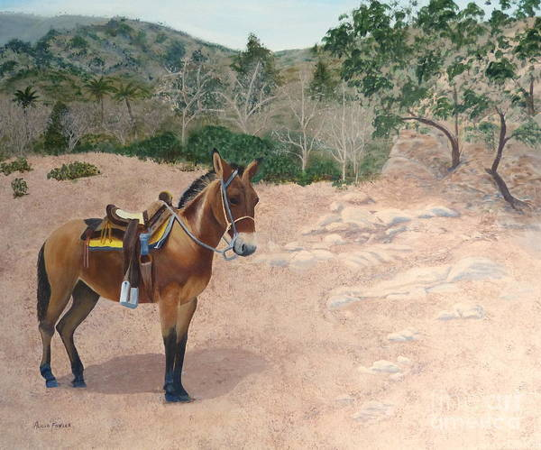 Painting - Zachary The Mule by Alicia Fowler