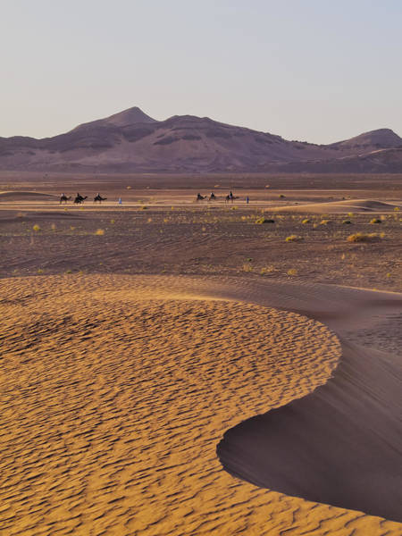 Wall Art - Photograph - Zagora Desert by Karol Kozlowski