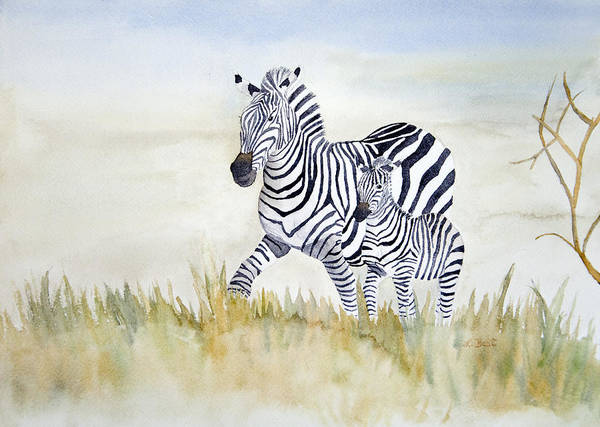 Painting - Zebra Family by Laurel Best
