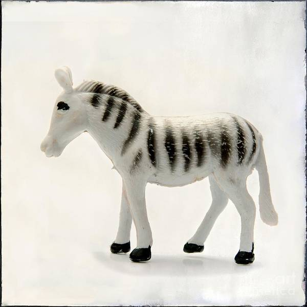 Wall Art - Photograph - Zebra Figurine by Bernard Jaubert