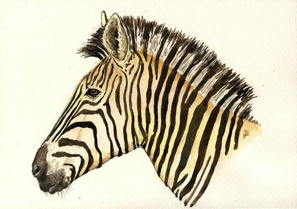 Wild Horse Painting - Zebra Head Study by Juan  Bosco