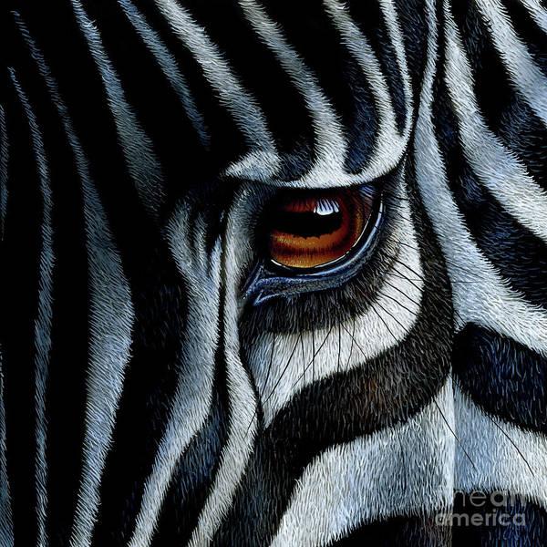 African Wildlife Painting - Zebra by Jurek Zamoyski