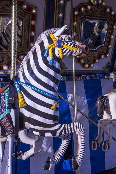 Hoof Photograph - Zebra Merry-go-round by Garry Gay