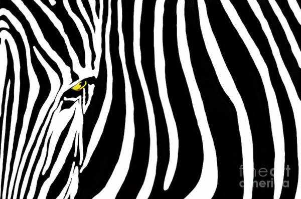 Wall Art - Photograph - Zebra Stripes Two Gfx by Dan Holm