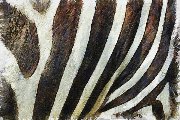 Painting - Zebra Texture by Inspirowl Design