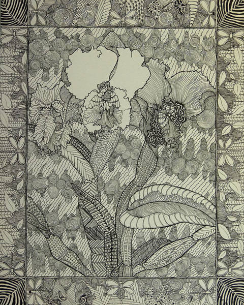 Drawing - Zen Orchids by Terry Holliday