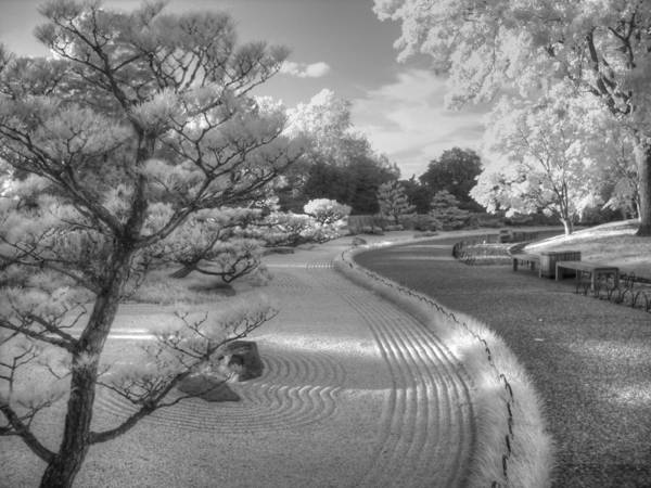Wall Art - Photograph - Zen Path by Jane Linders
