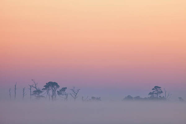 Photograph - Zen Sunrise At Chincoteague by Denise Bush
