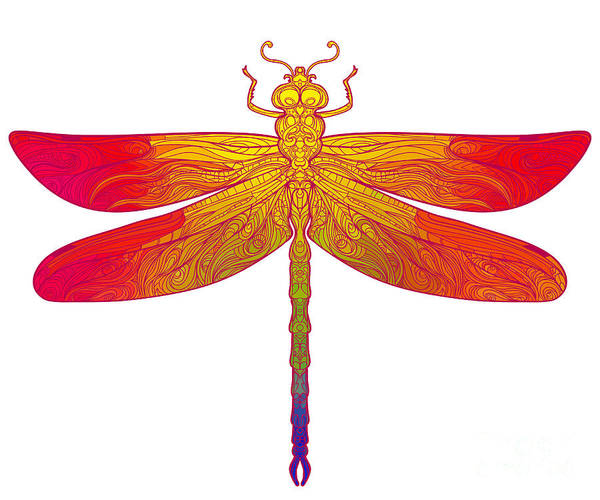 Vibrant Color Wall Art - Digital Art - Zentangle Stylized Dragonfly. Ethnic by Gorbash Varvara