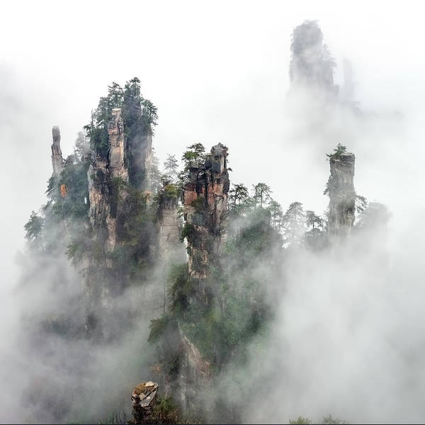High Key Wall Art - Photograph - Zhangjiajie by Hua Zhu
