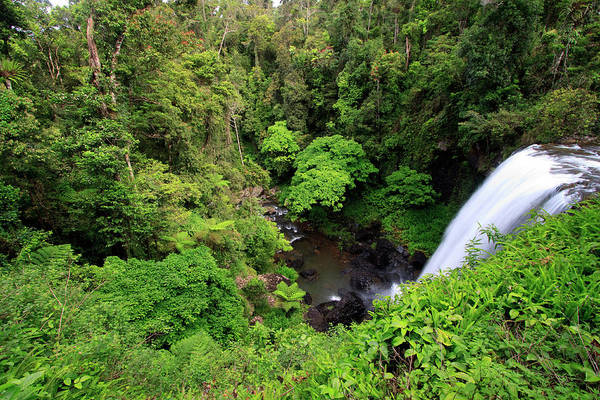 Far North Queensland Wall Art - Photograph - Zillie Falls Is One Of Three Popular by Paul Dymond