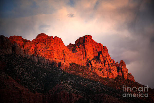 Wall Art - Photograph - Zion At Sunset by Jane Rix