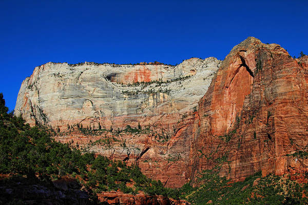 Photograph - Zion Cliff And Arch by Jemmy Archer