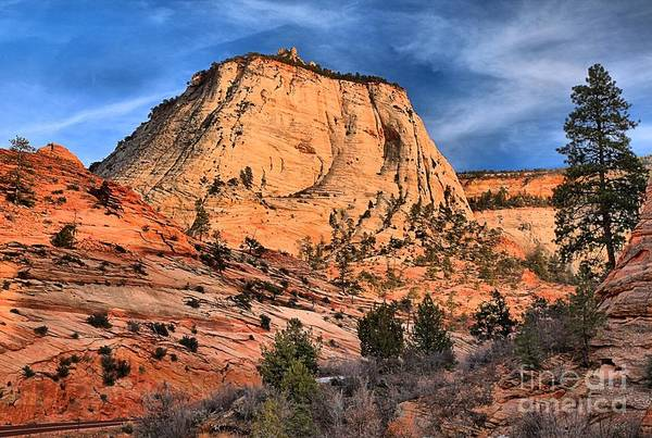 Photograph - Zion East Landscape by Adam Jewell
