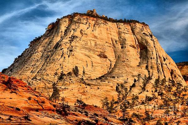 Photograph - Zion East White Dome by Adam Jewell
