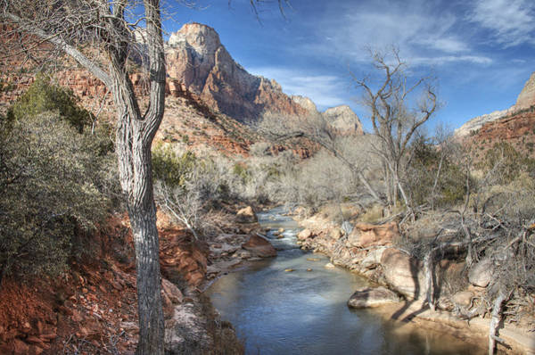 Photograph - Zion National Park by Darlene Bushue