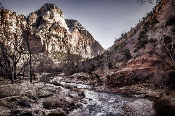 Photograph - Zion Np by Heather Applegate