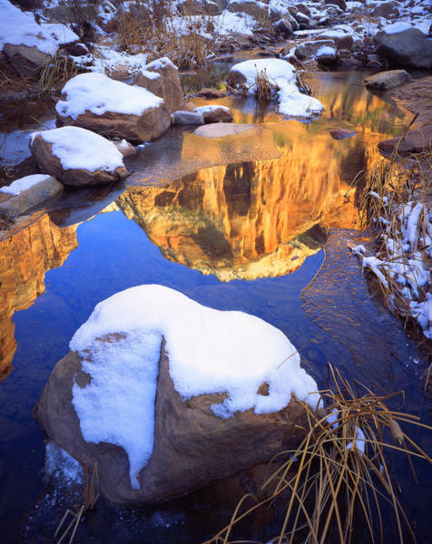Photograph - Zion Pool by Ray Mathis
