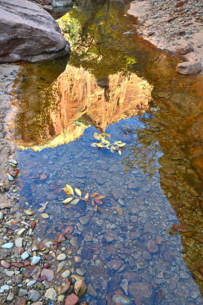 Photograph - Zion Pool Reflection by Ray Mathis