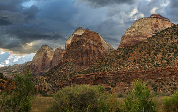 Photograph - Zion by Torrey McNeal