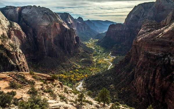 Photograph - Zion Valley From The Summit Of Angels Landing by Pierre Leclerc Photography