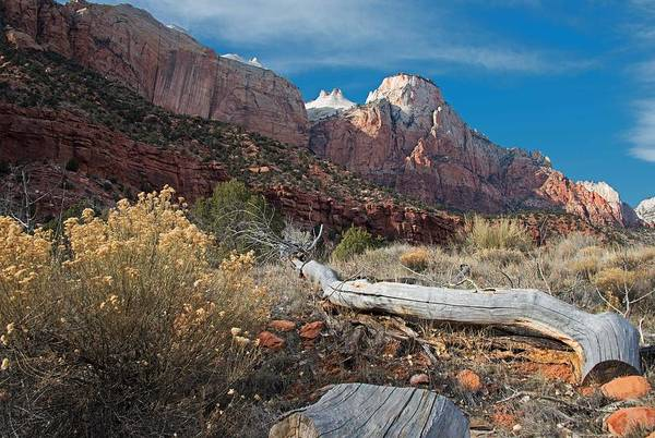 Photograph - Zion's Allure by Darlene Bushue