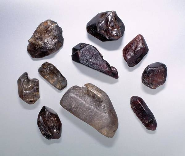 Nigeria Wall Art - Photograph - Zircon Specimens by Natural History Museum, London/science Photo Library