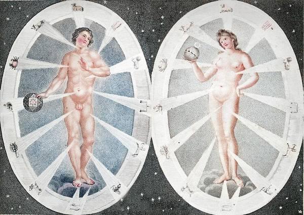 Creationist Wall Art - Photograph - Zoadiac Adam And Eve by Paul D Stewart