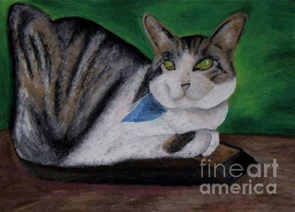 Pastel - Zoey The Cat by Jon Kittleson