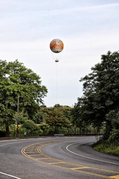 Photograph - Zoo Balloon by Bill Cannon