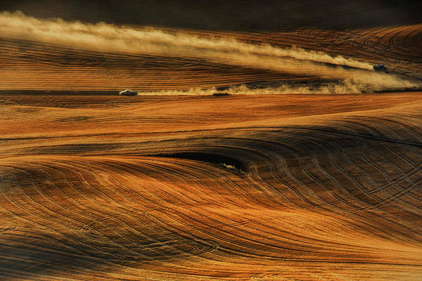 Wheat Wall Art - Photograph - Zoom by Lydia Jacobs