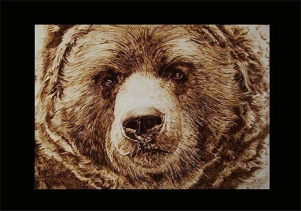 Pirografia Wall Art - Pyrography -  Bear by Davide Della Noce