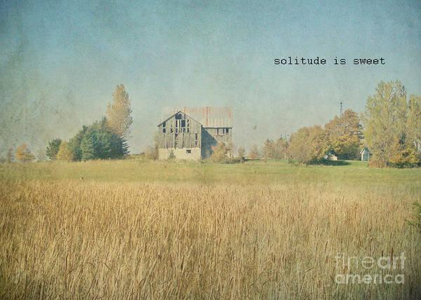 Photograph -  Farm House Solitude by Traci Cottingham