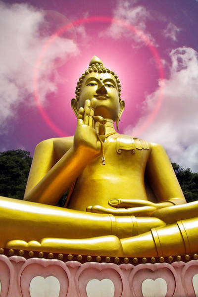 Photograph -  Golden Love Buddha by Harry Spitz