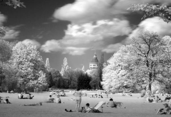 Photograph -  In Park by Odon Czintos