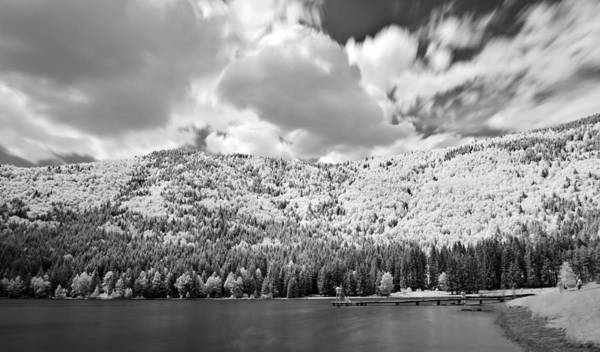 Photograph -  Infrared Landscape by Odon Czintos