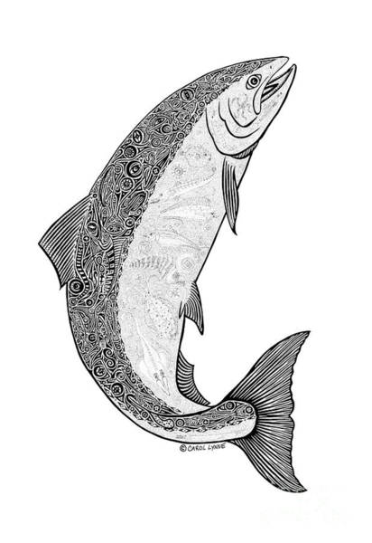 Wall Art - Drawing -  Salmon II by Carol Lynne