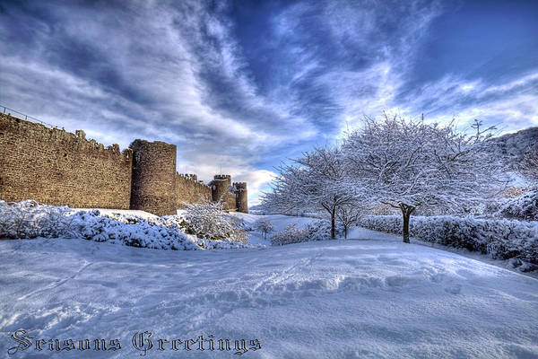 Photograph -  Snowy Seasons Greetings by Beverly Cash