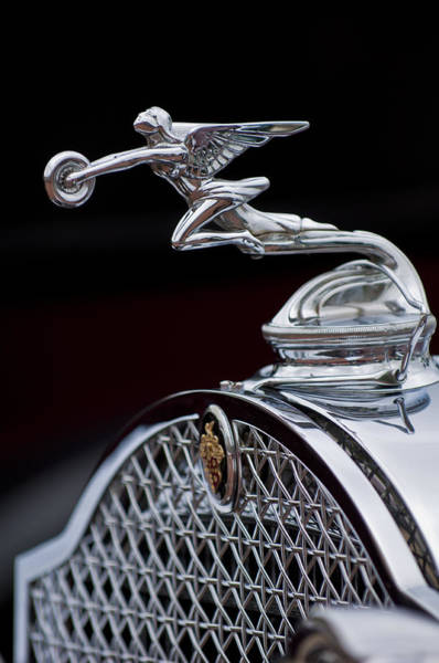 Photograph - 1931 Packard Deluxe Eight Roadster Hood Ornament by Jill Reger