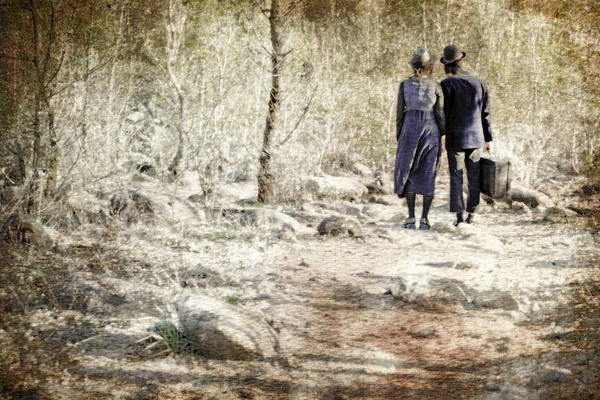 Wall Art - Photograph - A Couple In The Woods by Joana Kruse