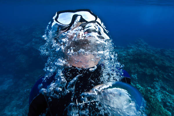 Free Dive Wall Art - Photograph - A Free Diver Exhales by Jason Edwards
