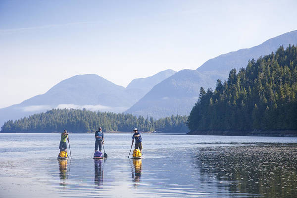 Standup Paddleboard Photograph - A Group Standup Paddleboards by Taylor S. Kennedy