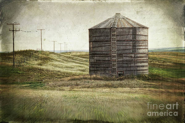Compartments Photograph - Abandoned Wood Grain Storage Bin In Saskatchewan by Sandra Cunningham