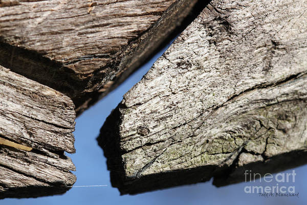 Photograph - Abstract With Angles by Todd Blanchard