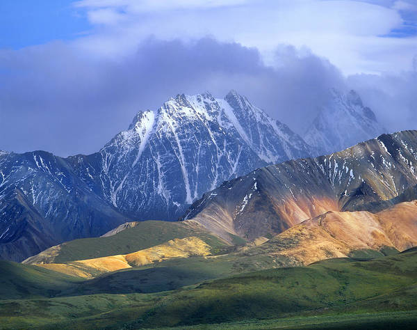 Photograph - Alaska Range And Foothills Denali by Tim Fitzharris