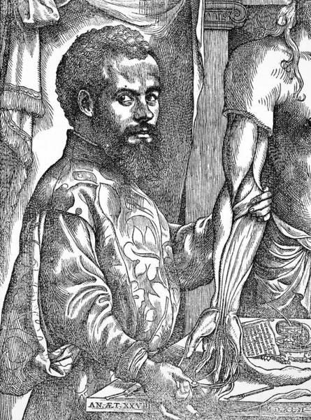 De Humani Corporis Fabrica Photograph - Andreas Vesalius, Belgian Anatomist by