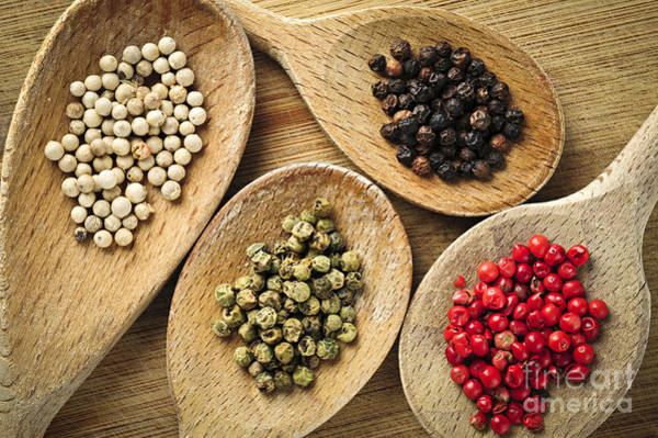 Flavours Wall Art - Photograph - Assorted Peppercorns by Elena Elisseeva